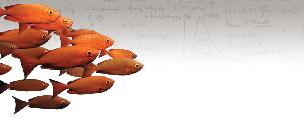 AirpotBanner Fish 1024x400